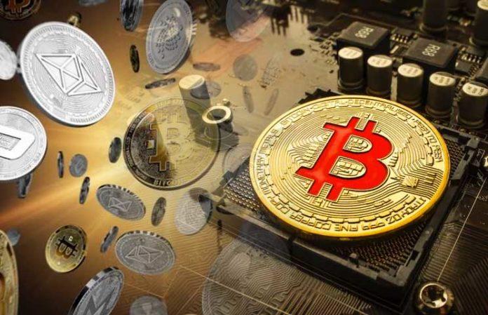 Altcoins vs. Bitcoins