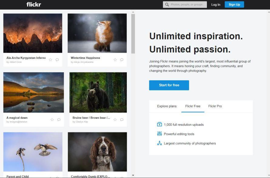 Flicker.com– Best Free Photo Sharing Websites