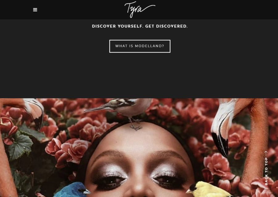 Tyra Banks - Foreign Celebrity Websites